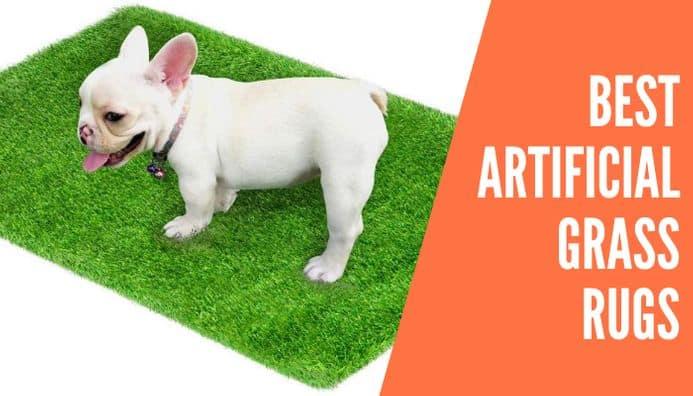 Best Artificial Grass Rugs