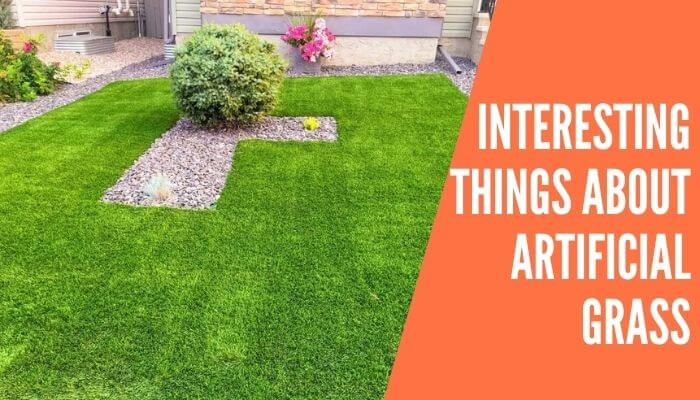 Interesting Things About Artificial Grass