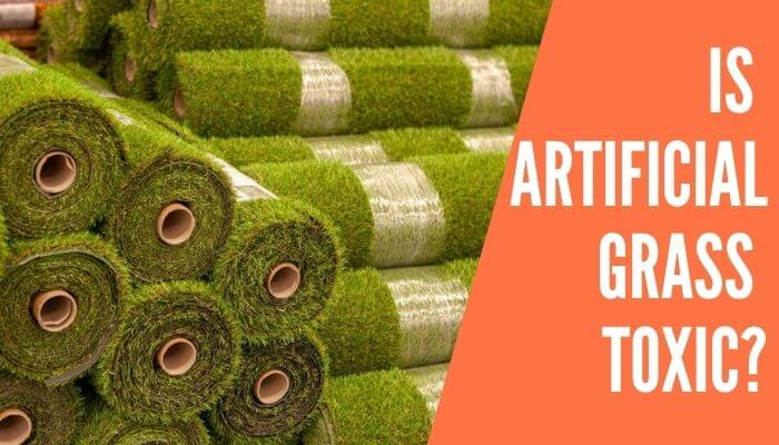 Is Artificial Grass Toxic